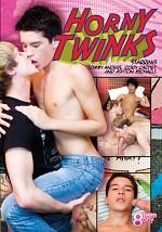 Horny Twinks
