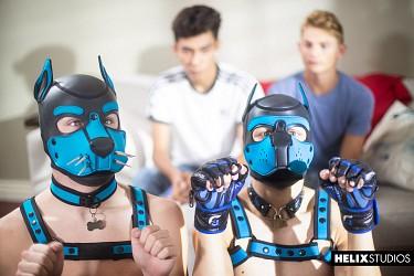 Pup Play | Part Three photo 1