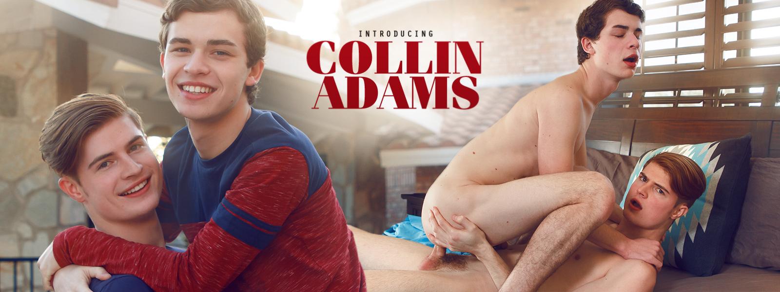 Introducing Collin Adams