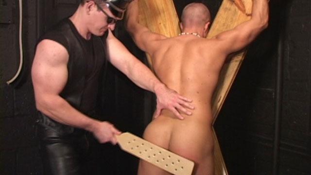 Gay movie porn star